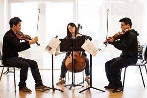 Trio Cordes